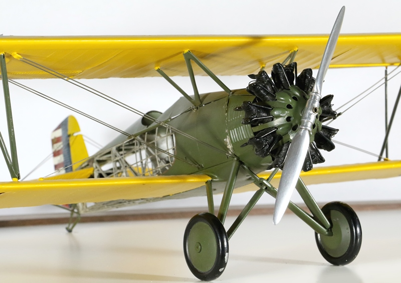 The model is static, and so the detailed radial engine is for realism purposes only.